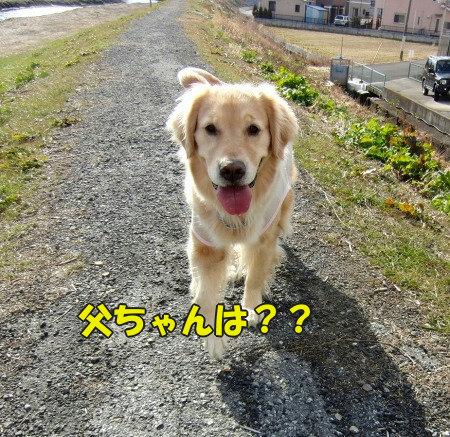 CIMG0627_20120215062252.jpg