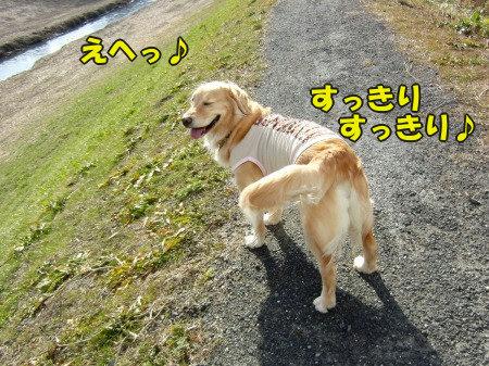 CIMG0628_20120215062413.jpg