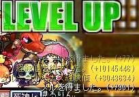 Maple100306_180546.jpg