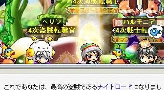 Maple100430_222120.jpg