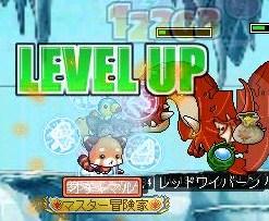 Maple101128_105432.jpg