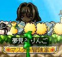 Maple101129_163758.jpg