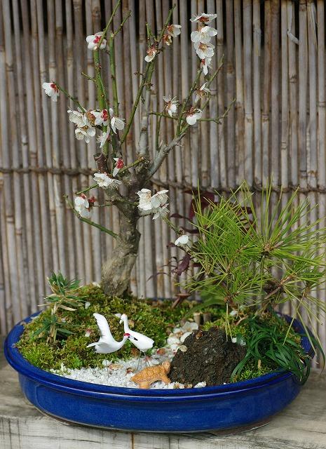 松竹梅の盆栽