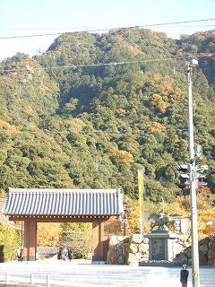 1117岐阜公園 003