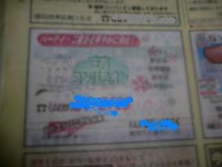 P1030569_convert_20110217231910_20110217233417.jpg