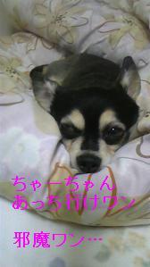 100511_224607.jpg