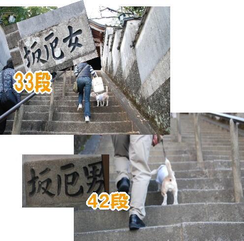 2009・11・28薬王寺c