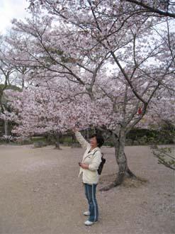 近水園と和子