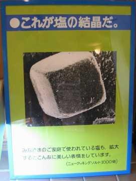 塩の結晶1