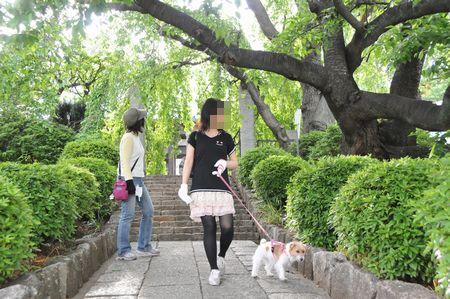 20115159.jpg