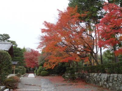 2009.11.29 天龍寺②