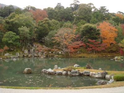 2009.11.29 天龍寺⑪