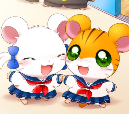 sailor-kai.jpg