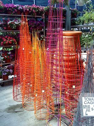 Chakra colored tomato cage