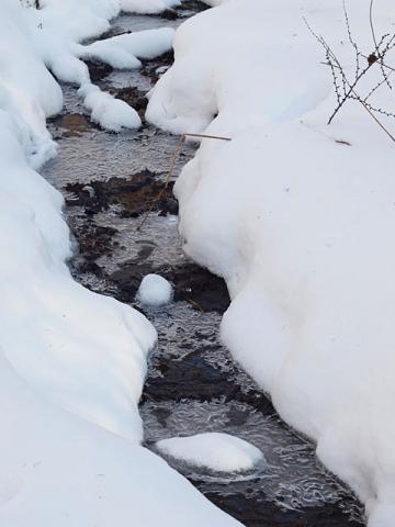 凍った流れ