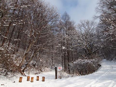 森入口100228