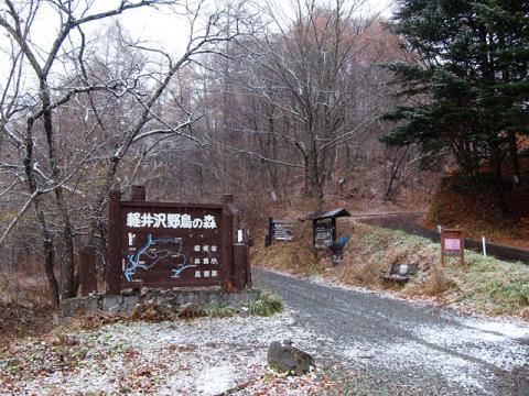 野鳥の森入口101118