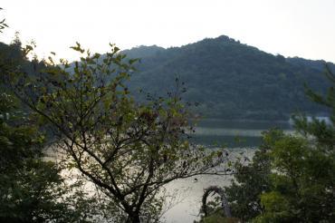 2010110606.jpg