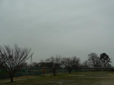 2011030202.jpg