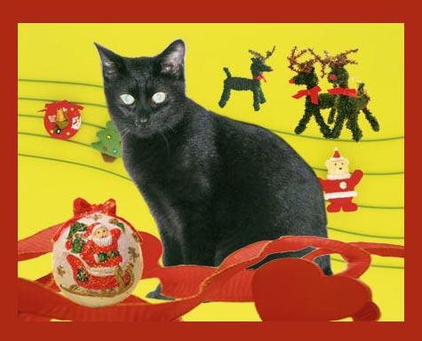 CAFG6M73 くろたんクリスマス