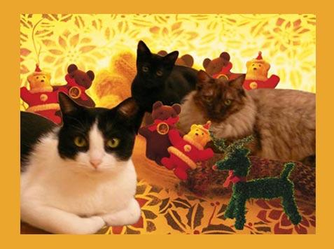 CAMA6Z8Aにゃんにゃーなくろクリスマス