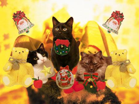 CA7KT2LL3にゃんクリスマス2