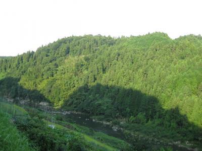 川沿いの階層路1