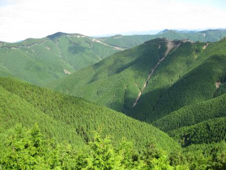 06高野山