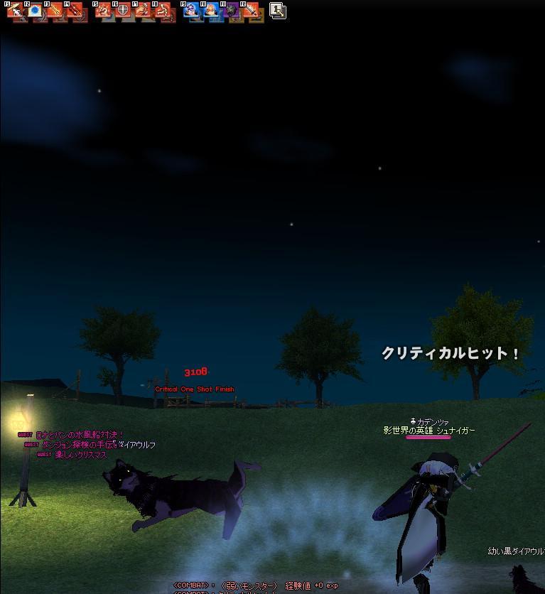 mabinogi_2009_11_20_002.jpg