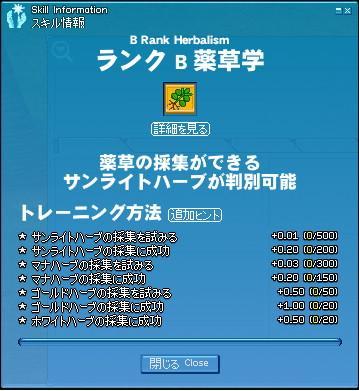 mabinogi_2009_12_14_002.jpg