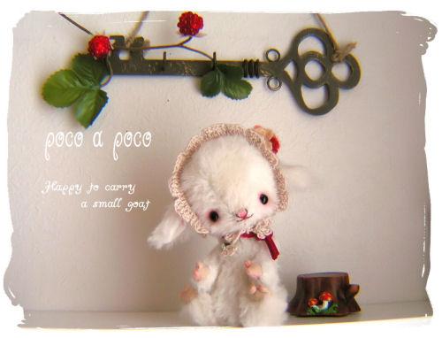 PICT06441.jpg