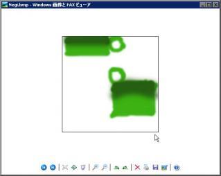 nWS000022.jpg