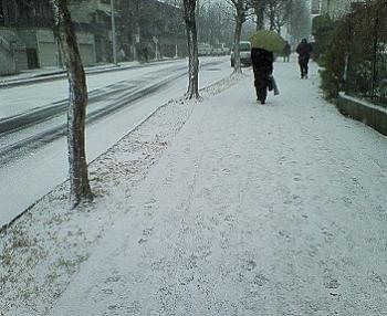 山手幹線 雪景色