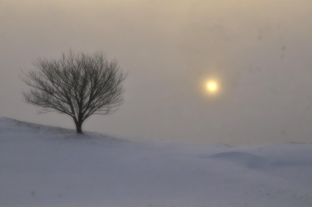 雪煙上がる丘