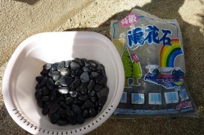 石焼き芋 (2)