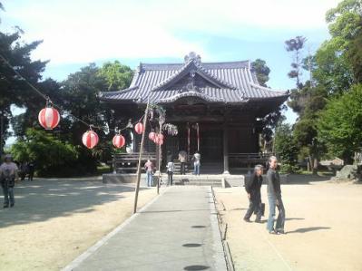 将軍藤 (6)