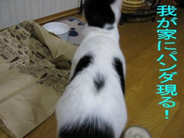 20091206_61-mini.jpg