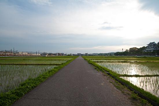瀬戸電沿線-3