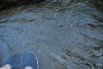足湯じゃなく足水