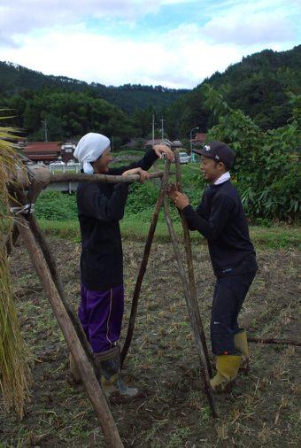 稲刈り稲木を立てる二人