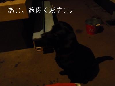 2010 03 21_O_0401