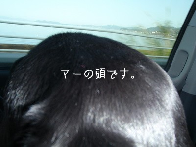 2010 03 22_O_0167
