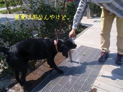 2010 05 01_2341