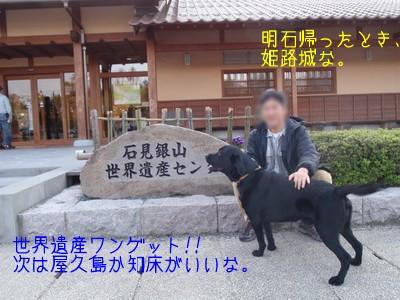 2010 05 01_2394