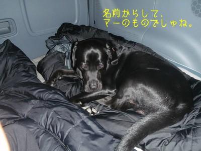2010 05 01_2433
