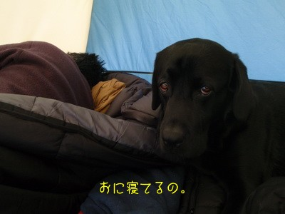 2010 05 03_1970