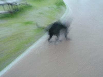 2010 07 14_5128