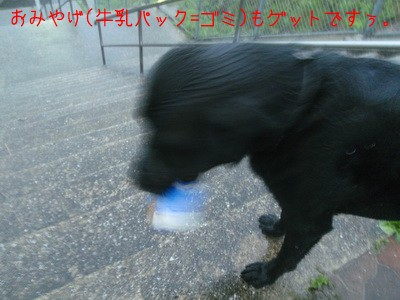 2010 07 14_5145