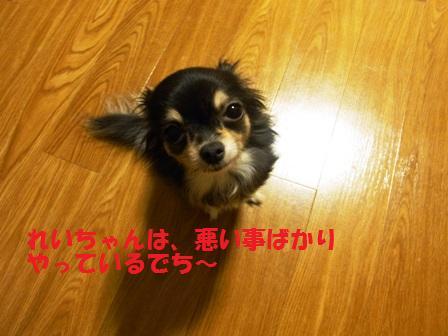 2010_0530_213956-RIMG2143.jpg