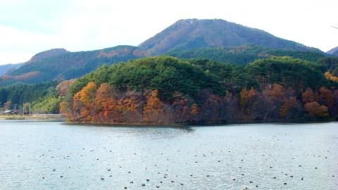 kasagamoriyama19